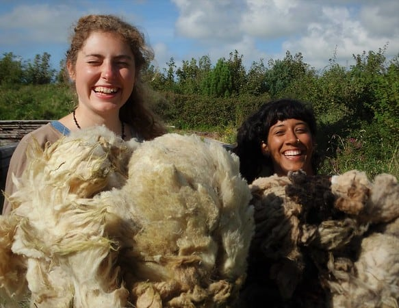 women with sheep sheerings
